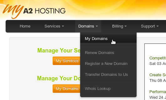 A2 Hosting Domain Management