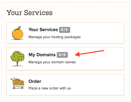 A Small Orange Manage Domains Section